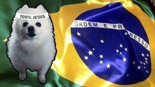 HINO NACIONAL do BRASIL em CACHORRÊS (ORIGINAL)
