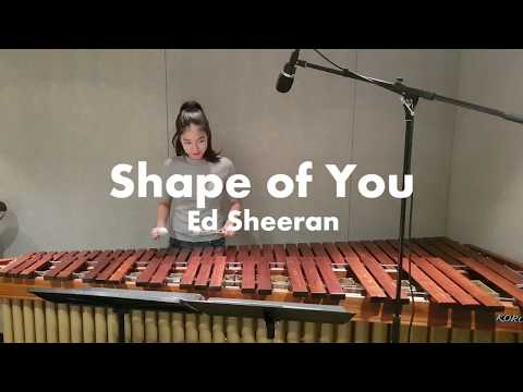 마림바로 연주하는 Shape of You - Ed sheeran / Marimba Cover