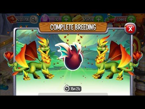 New Nature Dragon Vs
