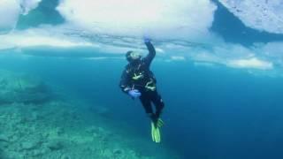 Superbe vidéo de plongée sous glace