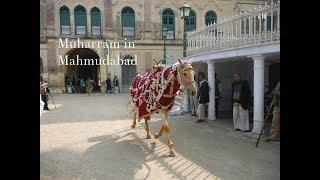 Muharram in Mahmudabad