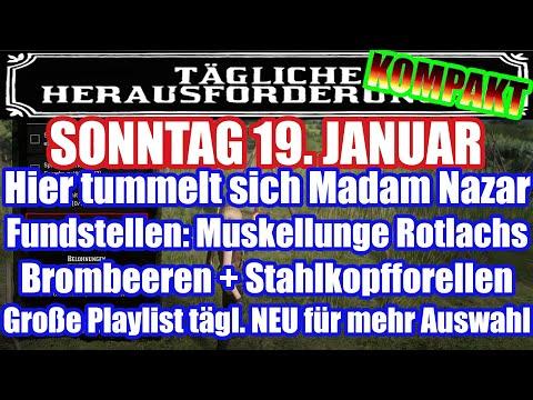 Sonntag 19. Januar Täglichen Herausforderung Dailys Nazar Red Dead Redemption 2 Online Deutsch