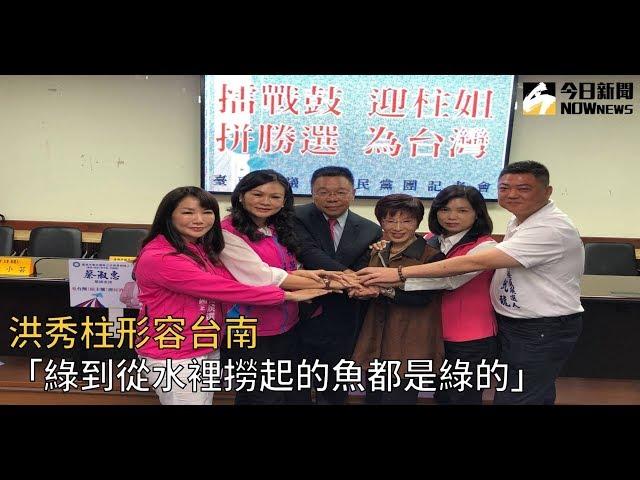 影/洪秀柱形容台南 「綠到從水裡撈起的魚都是綠的」