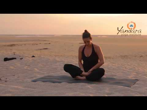 Siddhasana | Perfect Pose or Accomplished Pose by Allison Eaton