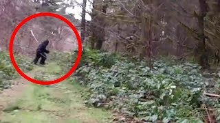 10 Real Bigfoot Sightings Caught on Tape