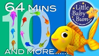 Counting Fish Song | Plus Lots More Nursery Rhymes | 64 Minutes Compilation from LittleBabyBum! - YouTube