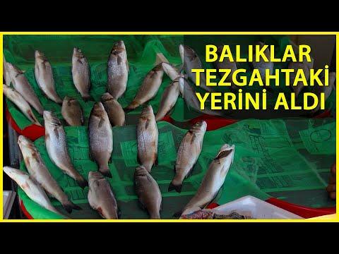 Balık Sezonu Açıldı; İşte Tezgahlardaki İlk Fiyatlar