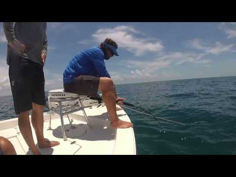 Boca Grande Goliath Grouper fishing guide.