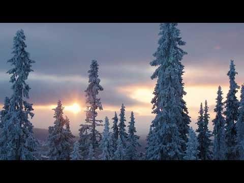 Kom närmare naturen i Lofsdalen