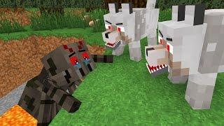 Spider Life II - Minecraft Animation