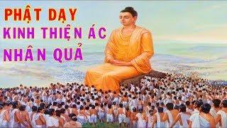 Đừng Khóc Vì Đời Bất Công Ngang Trái - Nghe Phật nói Kinh Thiện Ác Nhân Quả Để Hiểu Được Lý Do ...