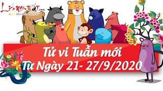 Xem tử vi hàng ngày - Tử vi tuần mới từ ngày 21 tháng 9 đến ngày 27 tháng 9 năm 2020 của 12 con giáp