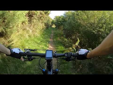 Click to view video Lower track on the side of the purbeck hills Gopro