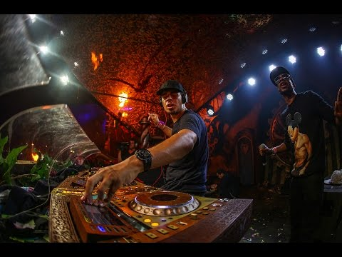 TomorrowWorld 2015 | Afrojack