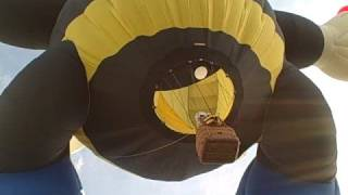 Oct 4, 2008 - Balloon Fiesta