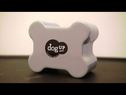 Live Dog Grooming With GIVEAWAY