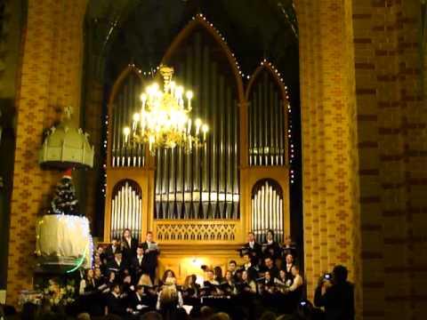 Відбувся концерт Академічного камерного хору «Чернівці» «Різдвяний подарунок»
