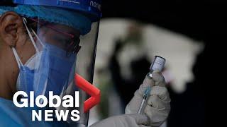 The push for the development of a universal coronavirus vaccine