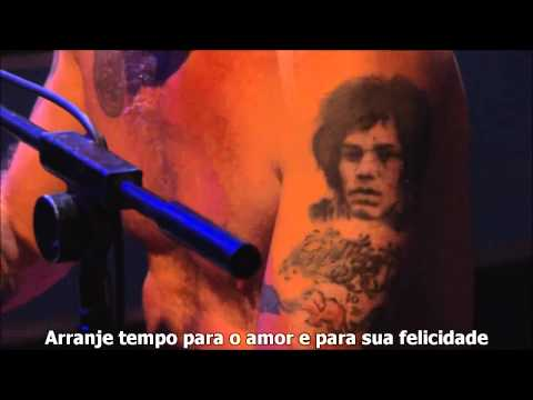 Red Hot Chili Peppers - Happiness Loves Company - (Legendado PT/BR)