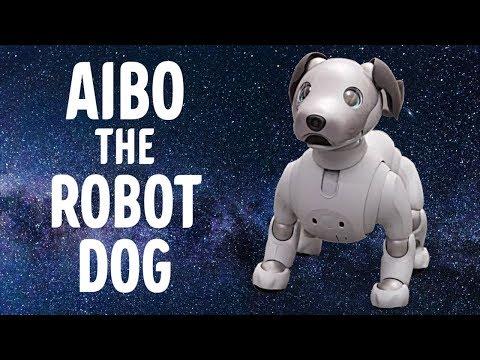 Robothunden Aibo @ CES 2018