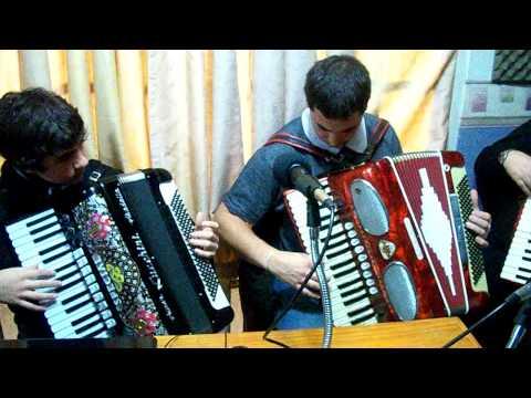 carnaval di venecia fisarmonica acordeon