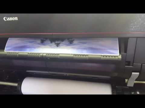 "Canon imagePROGRAF PRO 4000 44"" Printer Processing a Print"