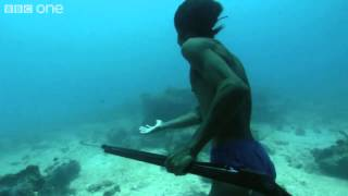 ‪Superhuman Filipino diver from the Badjao tribe ;BBC