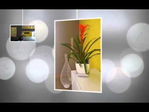 Interior Design For Bop Design, A Web Design Firm