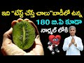 How to Get Rid of Blood Pressure | Blood Thinner | Immunity Booster | Dr Manthena Satyanarayana Raju