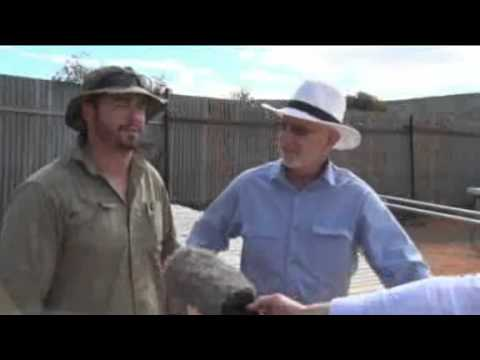 Impact Minerals on Southern Cross Broken Hill 29th October 2015