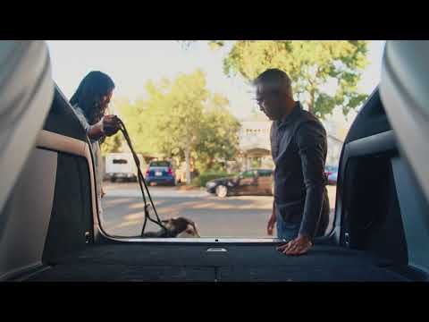 Model X Guide | Rear Seats