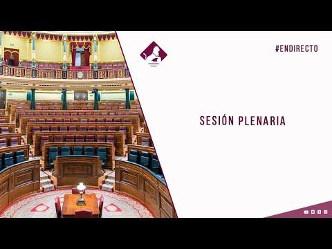 Sesión Plenaria (23/02/2021)