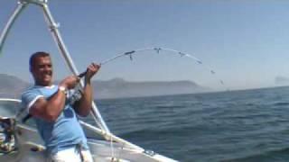 Asombroso pescado