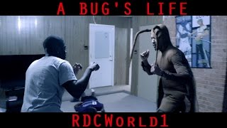 THE ROACH THAT GOT TIRED OF THE BS / A BUG'S LIFE (Short Film)