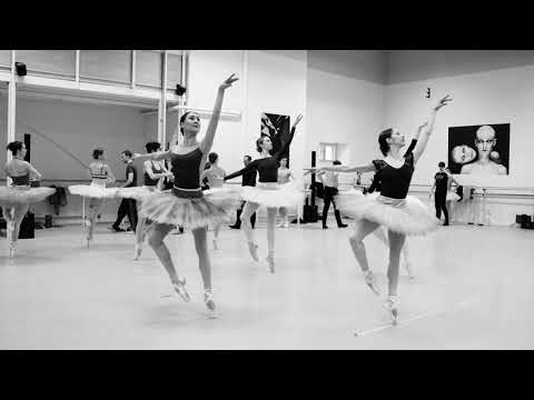 Suite en blanc – Trailer