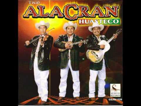 Me Regalo Contigo - Trio Alacran Huasteco