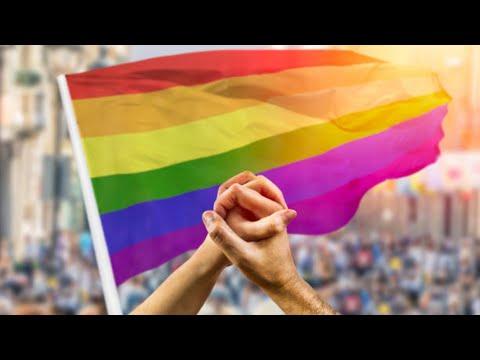 ORGULLO LGBT   Triunfos y amenazas