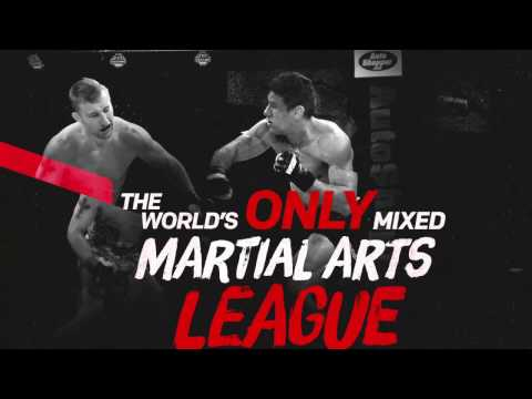 Introducing the Professional Fighters League.