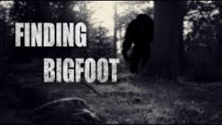 playing game Finding bigfoot help us ep1