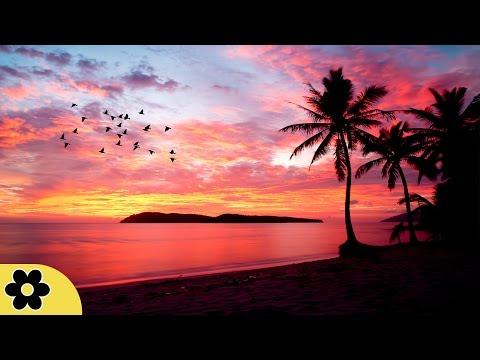 8 Hour Sleeping Music, Calming Music, Music for Stress Relief, Relaxation Music, Sleep Music, ✿3068C