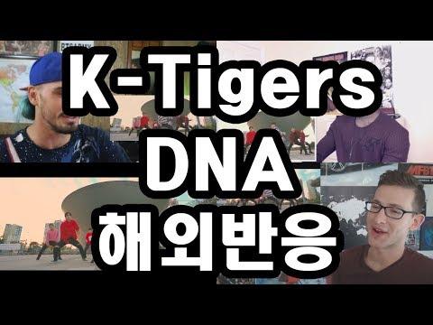BTS 방탄소년단 - DNA K-Tigers ver 해외반응