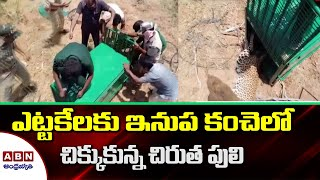 Telangana: Two forest staff injured in leopard attack whil..