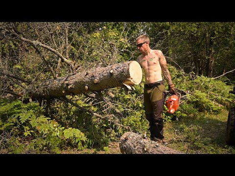 Building a Creekside Camp Ep 1 - Clearing Post Tornado Blown Down on the Trail In.