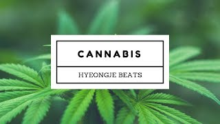[FREE] Cannabis - Lil Yachty x Kyle x Macklemore Type Beat