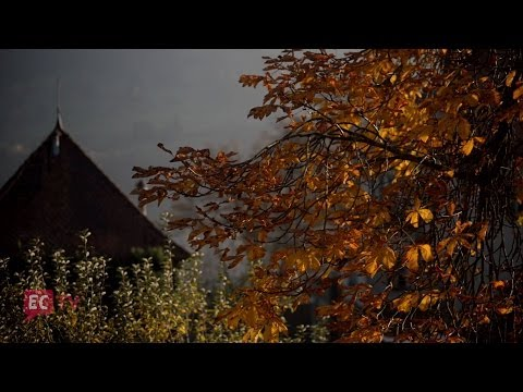 Joyful Autumn Effort - Construction from September to December [ECTV]