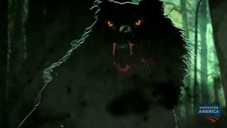 The Louisiana Wolfman | Swamp Monsters