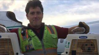 New details emerge on employee who stole, crashed airplane