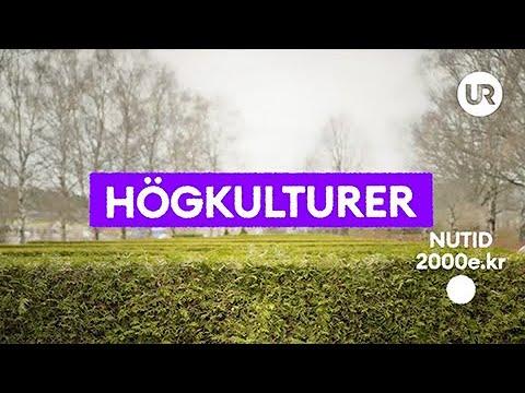 Snabbkoll på historien - Högkulturer | Historia | Grundskola år 7 - 9