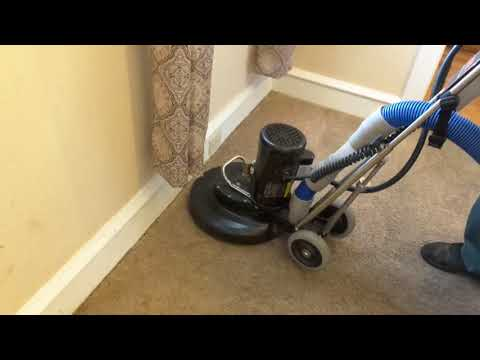 Top-rated Carpet Cleaning Company in Pottstown PA