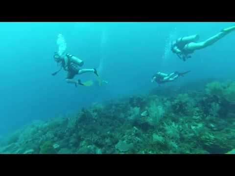 15 Seconds or Less - Scuba Diving On The Corn Islands!